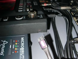 CIMG5263.JPG