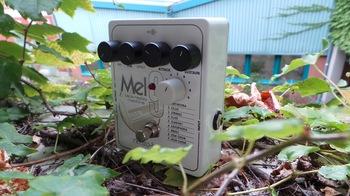 Electro-Harmonix Mel9 Tape Replay Machine : Test EHX Mel9 Photo 5