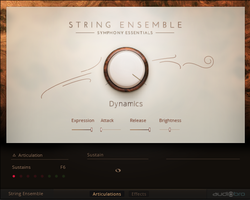 Native Instruments Komplete 11 Ultimate : strings ensemble