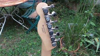Fender Deluxe Nashville Tele 2016 : 14