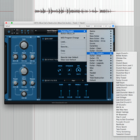 Blue Cat Audio Destructor : Presets