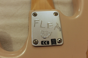 Fender Flea Jazz Bass : IMG 9947.JPG