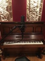 Lewitt LCT 640 TS : 6_Lewitt Side Piano
