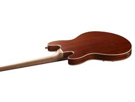 Warwick Sklar Bass I Signature 4