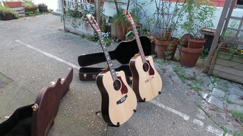 Gibson HP 415 W : Gibson HP 415 W (5578)