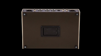 Mesa Boogie Rosette Acoustic DI Preamplifier : Mesa Boogie Rosette Acoustic DI Preamplifier (76055)