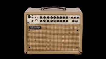 Mesa Boogie Rosette 300 / Two:Eight Acoustic Combo : Mesa Boogie Rosette 300 / Two:Eight Acoustic Combo (75411)