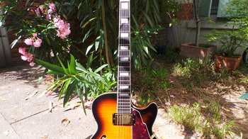 D'angelico EX-SS : D'angelico EX-SS (47306)