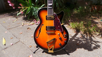 D'angelico EX-SS : D'angelico EX-SS (20605)