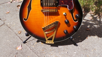 D'angelico EX-SS : D'angelico EX-SS (27245)