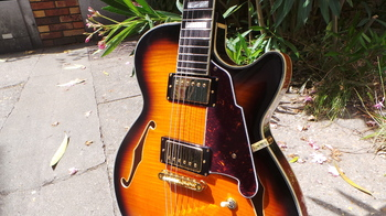 D'angelico EX-SS : D'angelico EX-SS (71040)