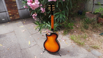 D'angelico EX-SS : D'angelico EX-SS (29773)