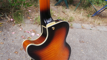 D'angelico EX-SS : D'angelico EX-SS (7818)
