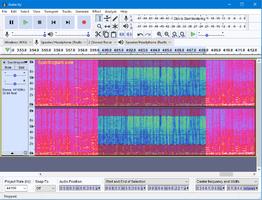 Audacity 220 spectrogam Windows normal