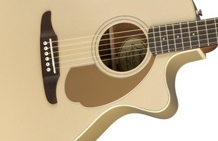 Fender Newporter Player : California Series Newporter Player   Champagne 3
