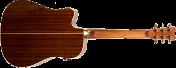 Reverse Tension Guitar D-430C : D 430C GN B