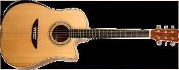 Reverse Tension Guitar D-430C : D 430C GN F