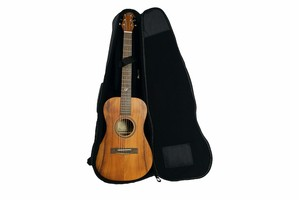 Journey Instruments Journey Junior JF880N : JF880N WITH BAG web