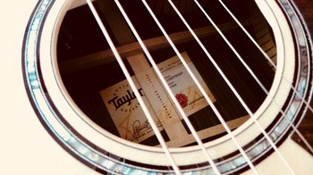 Taylor 814ce [2018-Current] : Taylor 814ce 2018 4