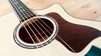Taylor 814ce [2018-Current] : Taylor 814ce 2018 12