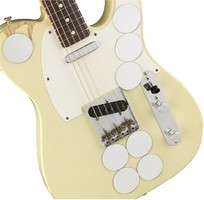Fender Limited Edition Jimmy Page Mirrored Telecaster : Jimmy Page Mirrored Tele (3)
