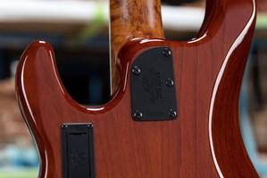 Ernie-Ball-Music-Man-BFR-Stingray-5-HH-Bass-Neck-Plate-1000x667