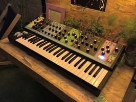Moog Music Matriarch : Moog Music - Matriarch - IMG_4788.JPG