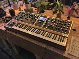 Moog Music Moog One 8 : Moog Music - One - IMG_4792.JPG