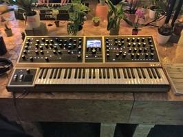 Moog Music Moog One 16 : Moog Music - One - IMG_4791.JPG