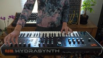 Ashun Sound Machines Hydrasynth : Hydrasynth Keyboard Rear Connect