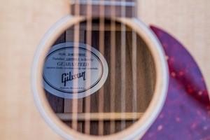 GibsonG45Studio-13
