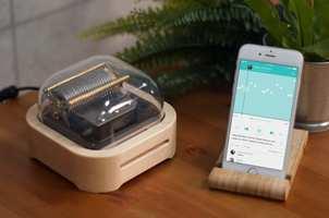 Muro Box and app