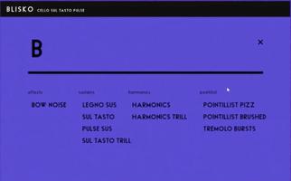 Felt Instruments Blisko Cello : Options
