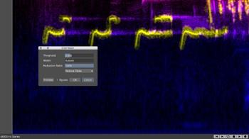Steinberg SpectraLayers Pro 7 : Click Repair