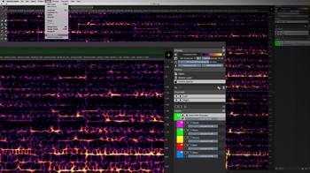 Steinberg SpectraLayers Pro 7 : Unmix Stems 1