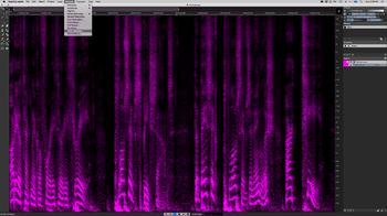 Steinberg SpectraLayers Pro 7 : Voice Denoiser