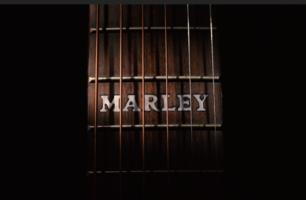 marleyinlay