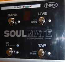 T-Rex Soulmate