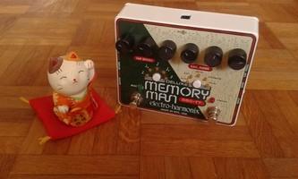 Electro-Harmonix Deluxe Memory Man 550-TT (38062)