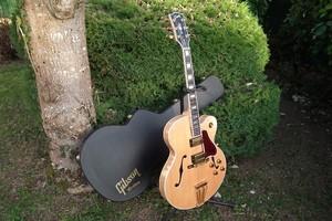 Gibson Byrdland (882)