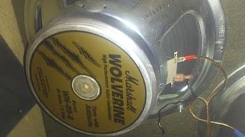 Celestion-Marshall-Wolverine (1)