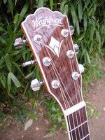 Washburn WD20SCE