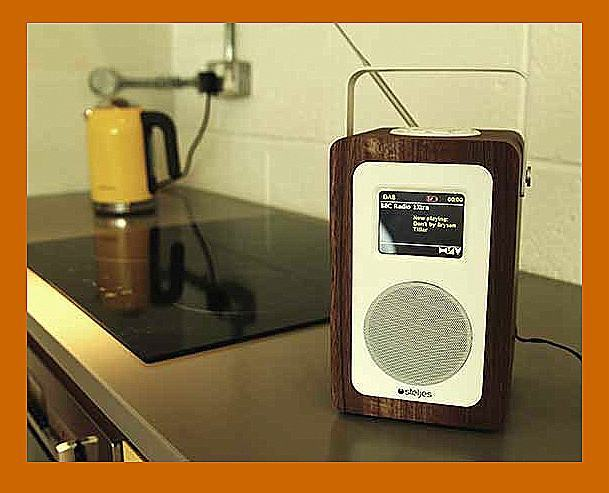 Steljes sa20 radio num rique portable avec bluetooth for Radio numerique portable