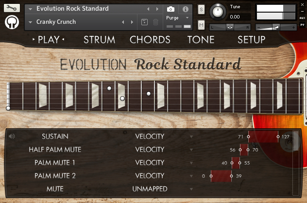 EvolutionRockStandardInterface