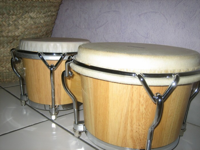 bongo 2.JPG