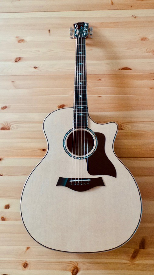 Taylor 814ce [2018-Current] : Taylor 814ce 2018 9