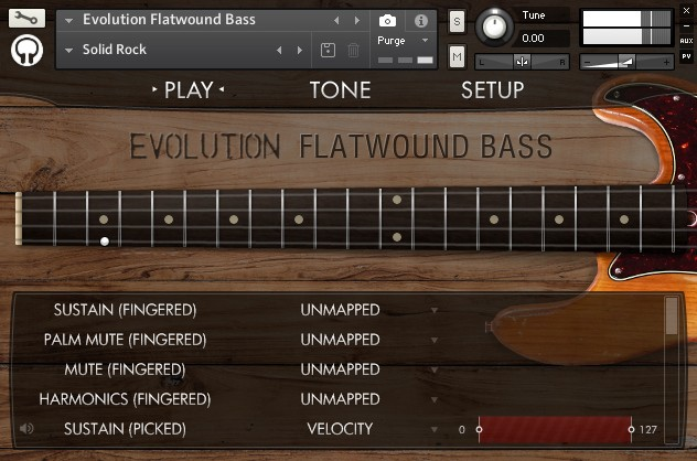 EvolutionFlatwoundBassInterface