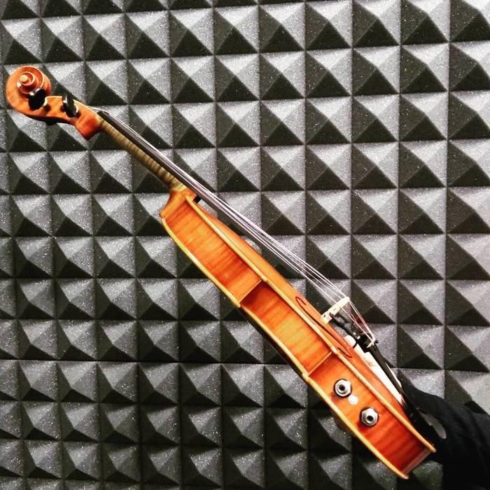 Hyvibe Violin