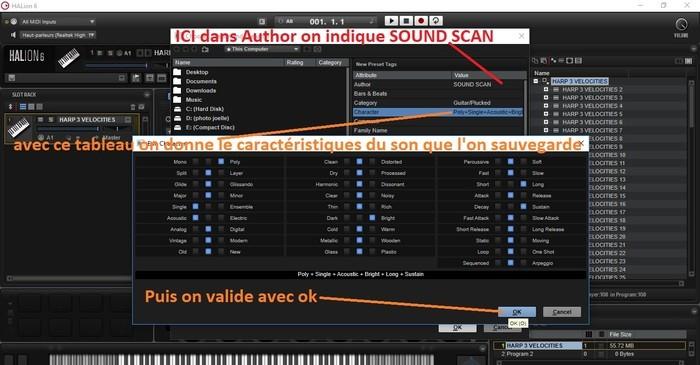 Steinberg HALion : image 09 on renseigne les caracterstiques du son