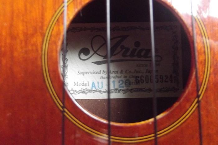Aria AU-120 (41533)